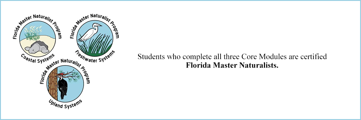 Students who complete all three Core Modules are certified Florida Master Naturalists.
