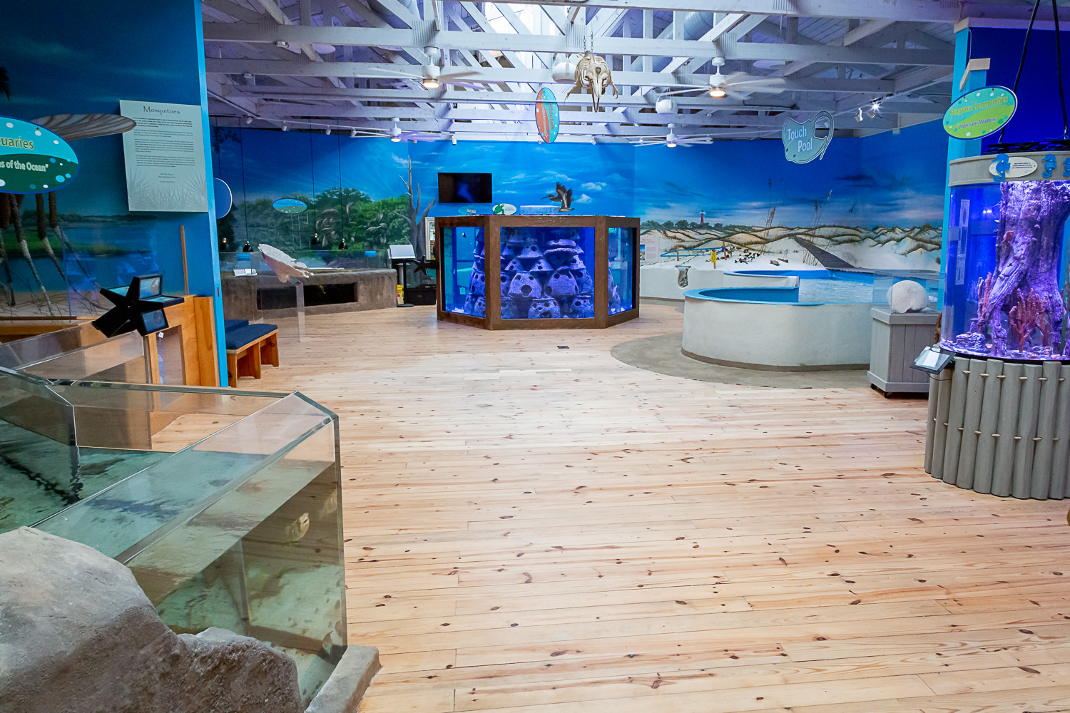 marine science center exhibits including artificial reef and touch pool